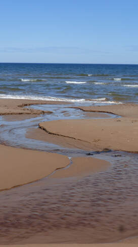 Spring drainage going to sea, Brackley Beach, PEI National Park, Canada.