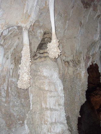 Cave popcorn deposits on stalactites, showing a past water level in the Big Room, Carlsbad Cavern