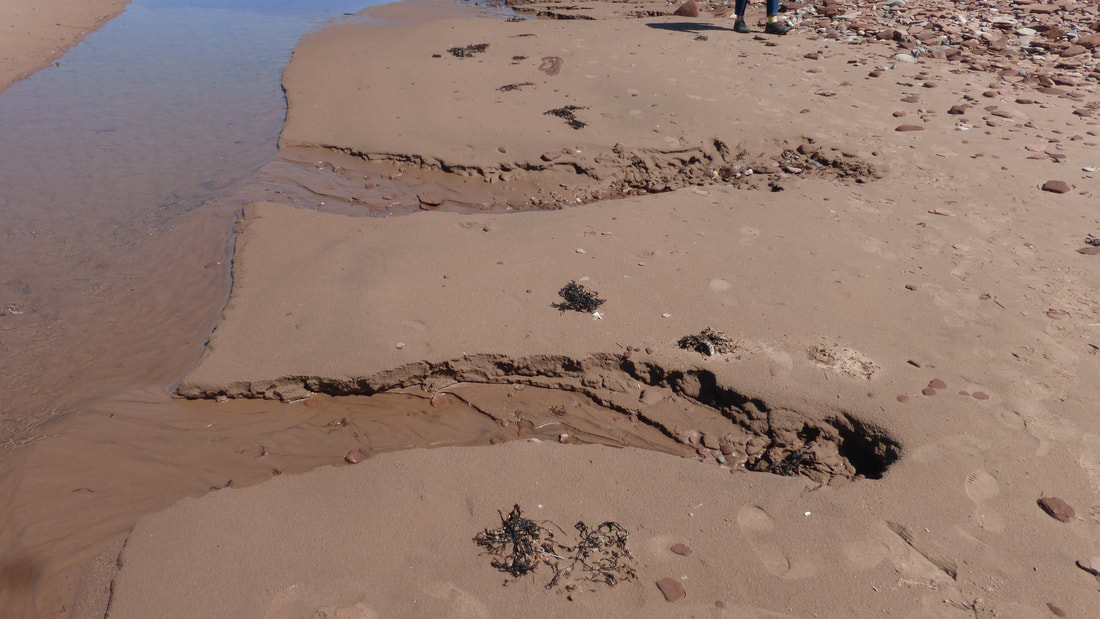 Seepage headcuts, PEI National Park, Canada.